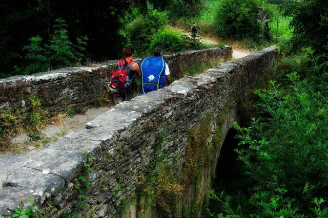 Peregrinos en el Camino de Santiago