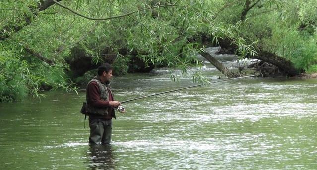 Pescario