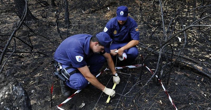 Policiaautonomicaincendiosforestaisinvestigacion 1