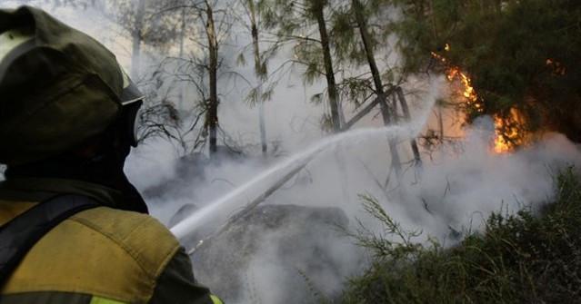 Entincion bombero forestal incendio