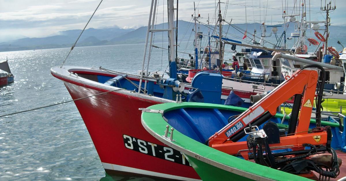 Pequeros barcos