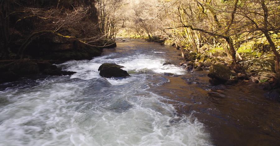 Rio agua caudal