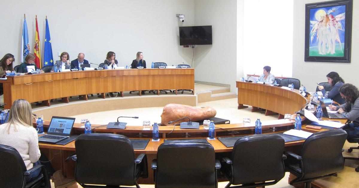 Comision parlamentaria
