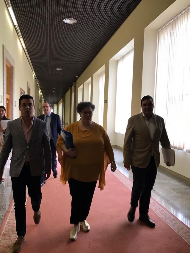 La valedora do Pobo, Milagros Otero, a su llegada en el Parlamento