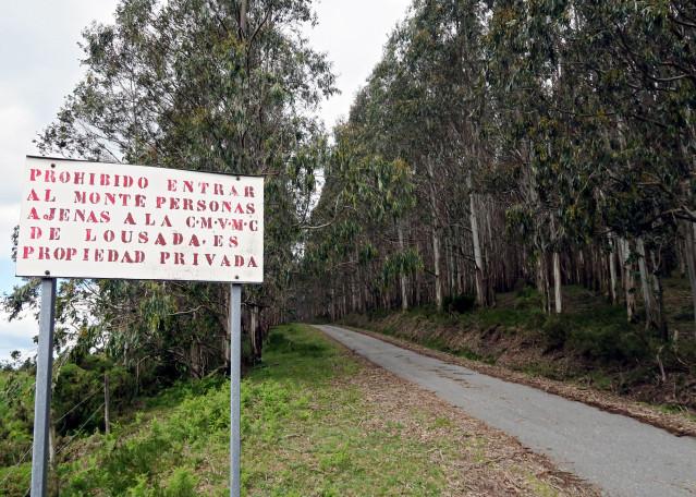Denuncian por supuestas irregularidades contables a la dirección de la comunidad de montes de Lousada, en Xermade (Lugo)