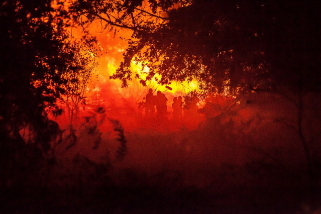 Oliver Laxe graba en un incendio para 'O que arde'