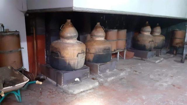 Intervenidos 177 litros de aguardiente, 4 alambiques y 443 precintas fiscales de cosechero en Aranga (A Coruña).